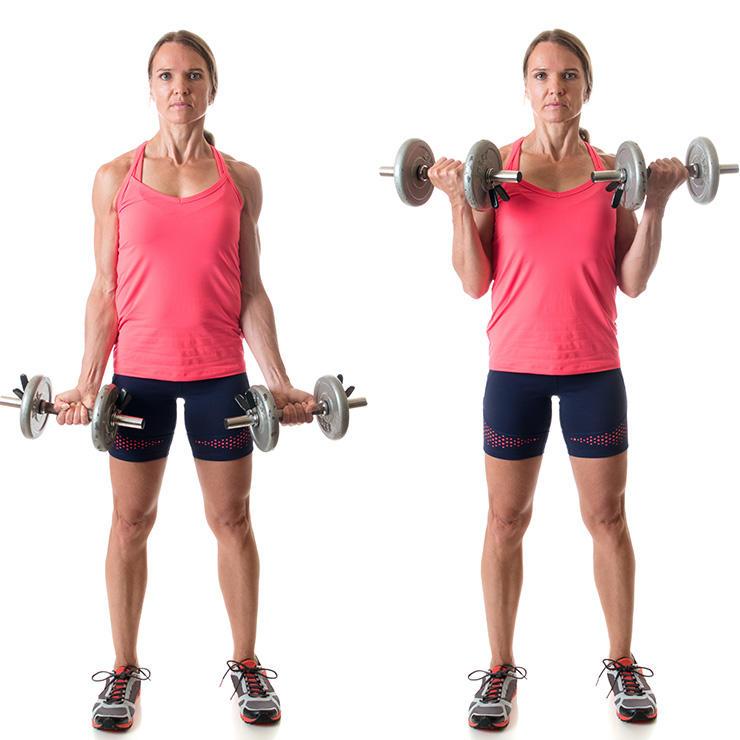 Standing Dumbbell Curl - Bài tập gym giảm cân, giảm mỡ tay trước với tạ đơn